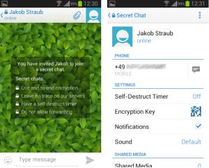 telegram-screenshot-3